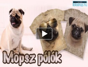 Mopsz-tortenete-kutyas-video